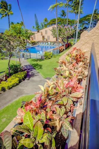 Kuleana Resort 507 - Lahaina, HI 96761
