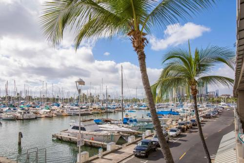Waikiki Studio - Honolulu, HI 96815