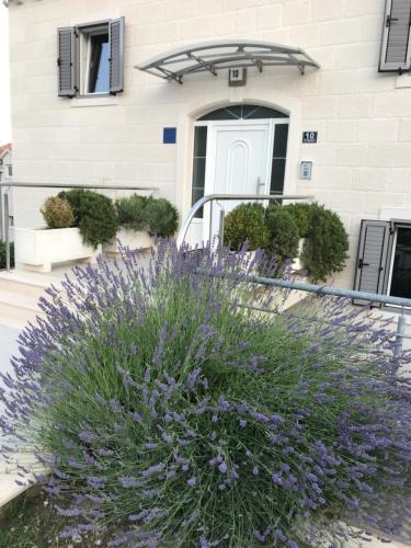 . Apartments Lovely Croatia