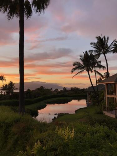 555 Kaukahi Street, Kihei, Maui, Hawaii 96753, United States.