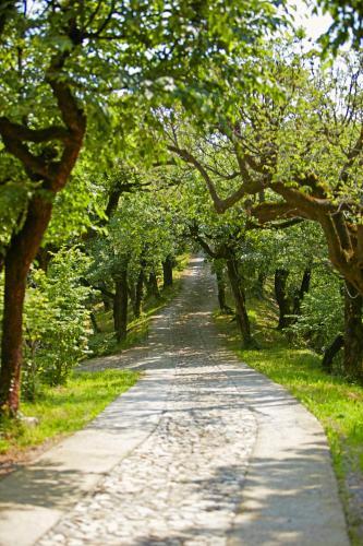 Via S. Bonomelli - Località Invino, Iseo, 25049.