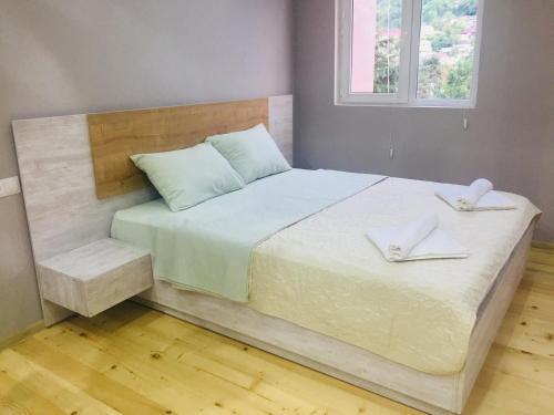 Diasamidzeebi apartment - Apartment - Borjomi