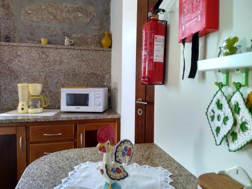 Casa do Pinheiro Manso, Valença