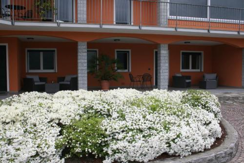 Via Pratolungo 12 28028 Pettenasco, NO, Italy.