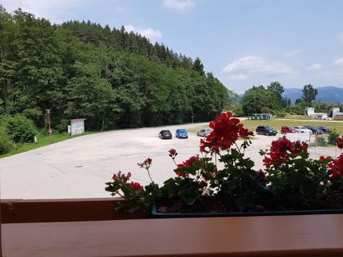 Фото отеля Pension Pirkdorfer See