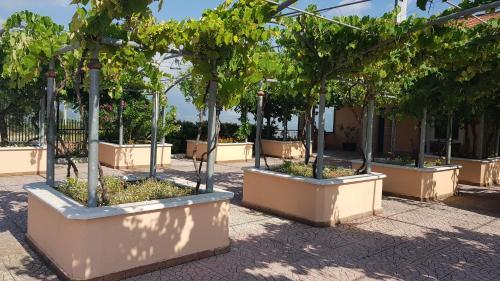 Lisandro Wine Resort Apartments Caserta