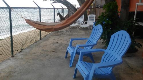 Blue Whales Beach Apartments - Photo 5 of 17