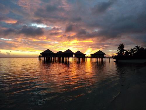 . Coconuts Beach Club Resort and Spa