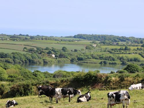 Cabin, Penryn, Penryn, Cornwall