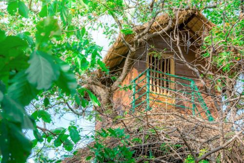 Wildescape Polonnaruwa, Thamankaduwa