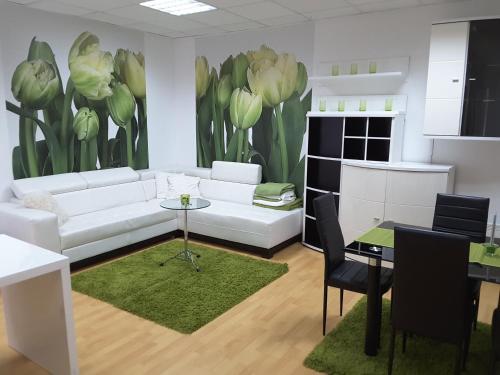 DELUX duplex apartment - Apartment - Mariborsko Pohorje