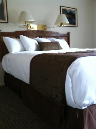 Americas Best Value Inn Mariposa Lodge