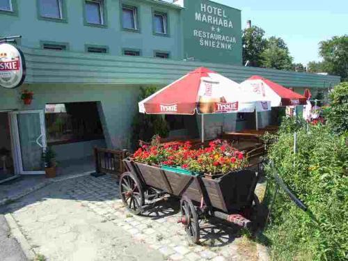 __{offers.Best_flights}__ Hotel Śnieżnik