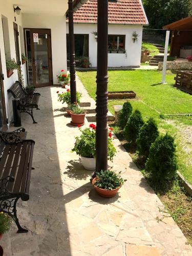 Hotel-overnachting met je hond in Augustine's Vendégház - Szálka