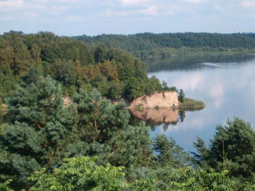 Dream forest house of Kaunas Reservoir szoba-fotók
