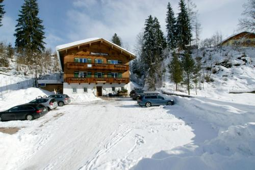 Фото отеля Alpen-Residenz Fieberbrunn