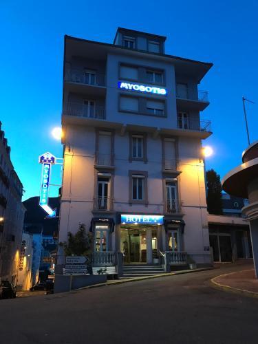 Hôtel Myosotis - Hôtel - Lourdes