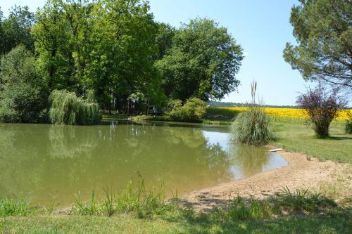 Refuge dans la Nature - Camping - Châtignac