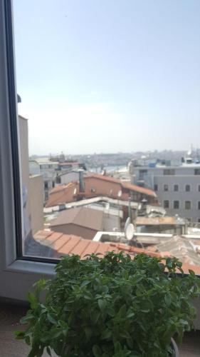 Istanbul Jurnal Terrace harita