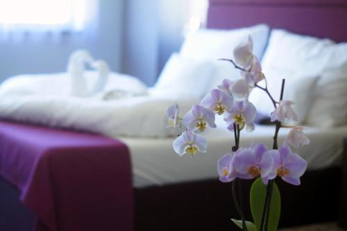 . Hotel Fitromax Ajka