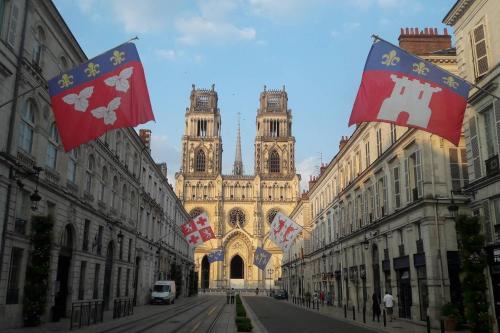Appartement d'exception face à la cathédrale - Location saisonnière - Orléans