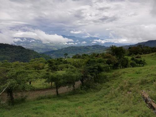 Finca Agropecuaria Queveri Foto principal