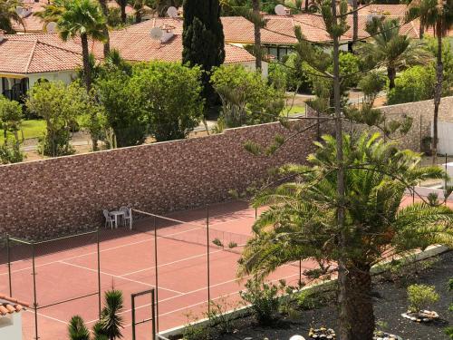 Фото отеля Apartamentos Aloe