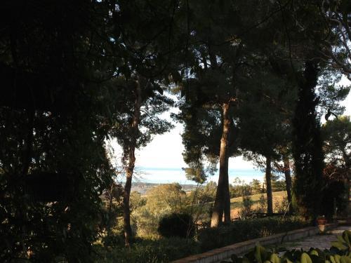 Strada San Bartolo 100, 57027 San Vincenzo LI, Italy.