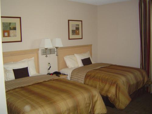 Candlewood Suites Dtc Meridian - Englewood, CO 80112