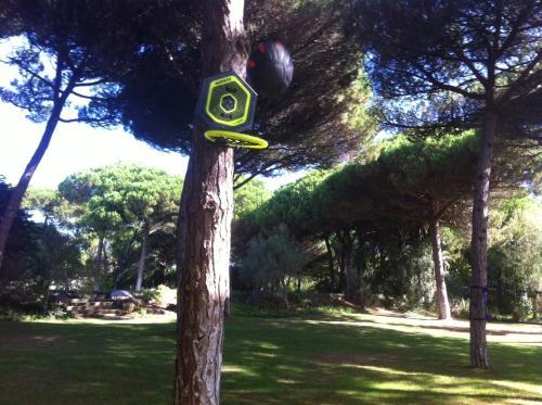 Villa com Jardim de Luxo, Sintra