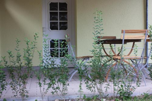 Lindenstube - Apartment - Blankenhain