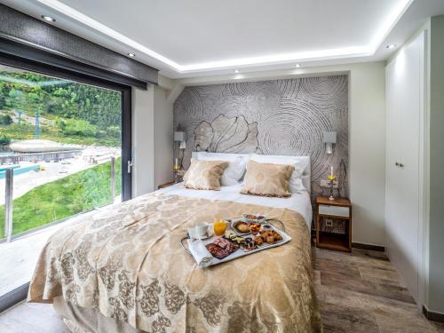 Фото отеля Aparthotel Spa Esquirol