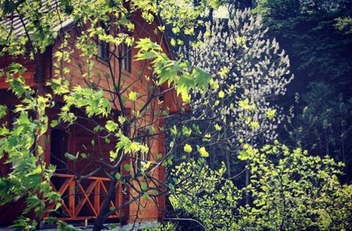 Yaylaköy Mora guest house