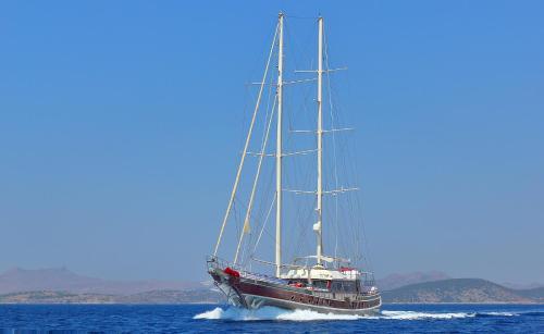 Bodrum City Double Eagle Yacht online rezervasyon