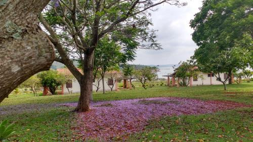 Foto de Hotel Paraíso das Garças