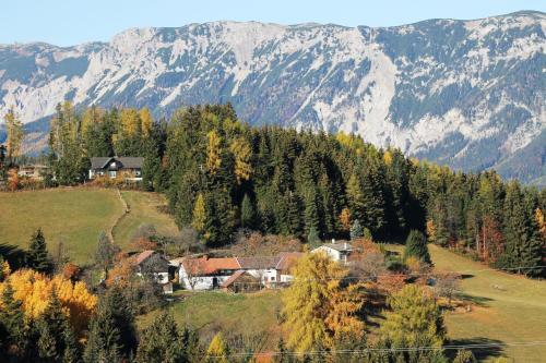 Ferienwohnung Holzer Top 2 - Payerbach