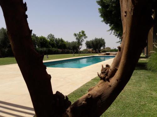 Al Maaden Villa Hotel & Spa Oda fotoğrafları