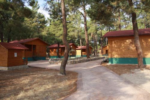 Camping Hoces del Duratón
