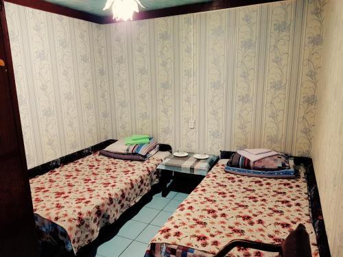 Север  Двухместный номер с 2 отдельными кроватями и общей ванной комнатой