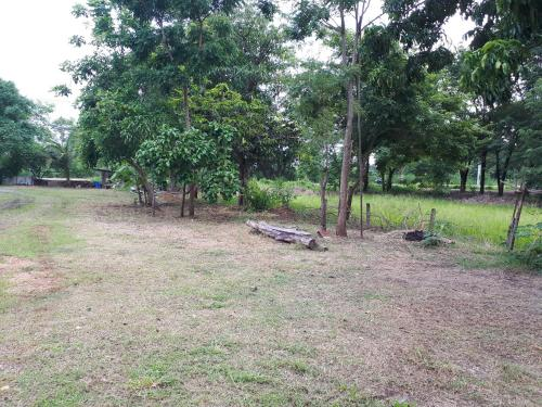 Nature Home, Bang Mun Nak