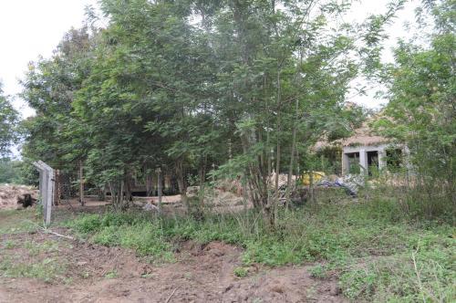 Irungu Forest Safari Lodge zdjęcia pokoju