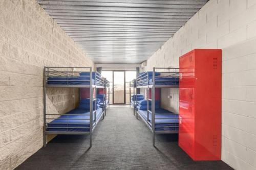 Bunk Bed in 8-Bed Female Dormitory Room with Private Bathroom