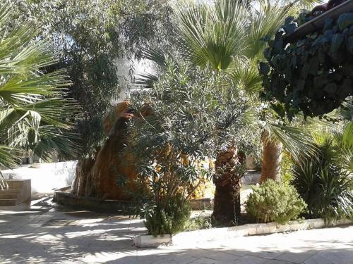 Karahayit KUR-TUR online rezervasyon