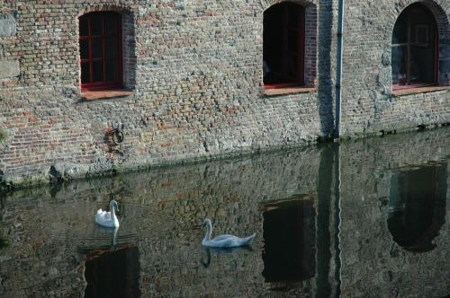 Oost Gistelhof 2, Bruges, 8000, Belgium.