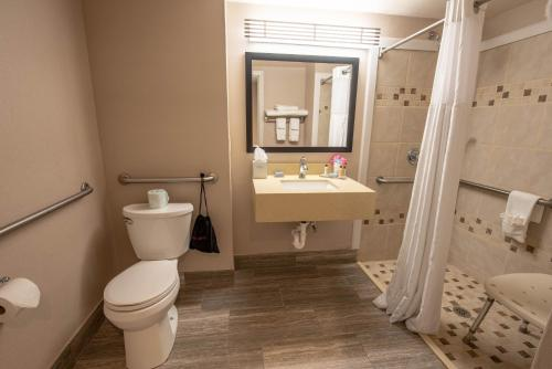 Wingate By Wyndham Indianapolis Airport Plainfield - Plainfield, IN 46168