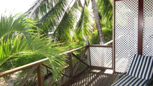 Dolphin Inn Guesthouse & Apartments