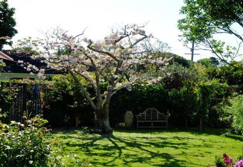 Garden Retreat - Apartment - Ōtaki