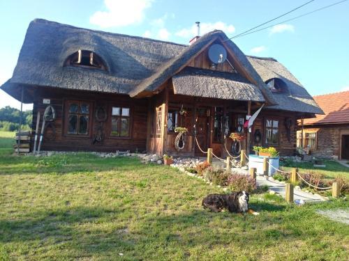 Accommodation in Mędrzechów