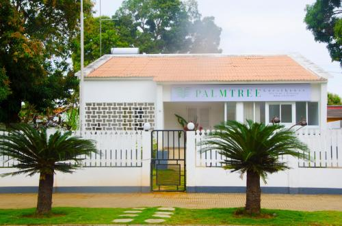 Palmtree Guest House