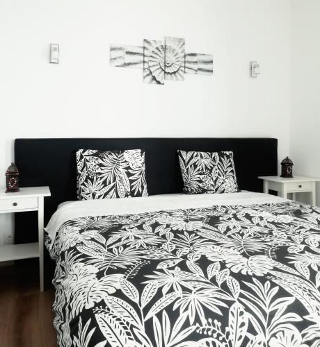 Pirata hostel Milfontes, Pension in Vila Nova de Milfontes